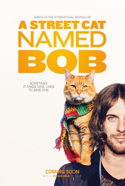 a-stret-cat-named-bob